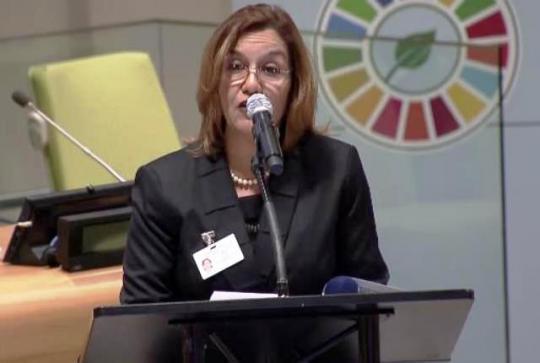 Elba Rosa Pérez