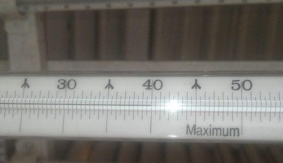 01 record calor veguitas 2020 580x335