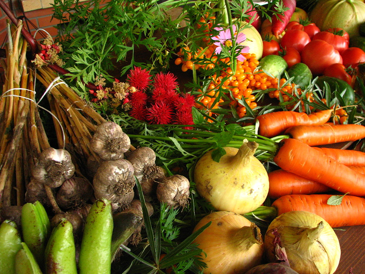 1200px Ecologically_grown_vegetables