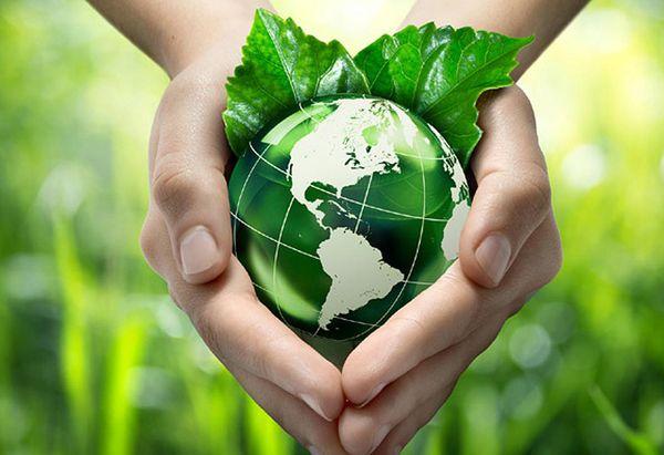 1509 medio ambiente1