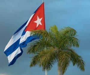 20190101MVH_09 Bandera Cubana y palma real 300x250