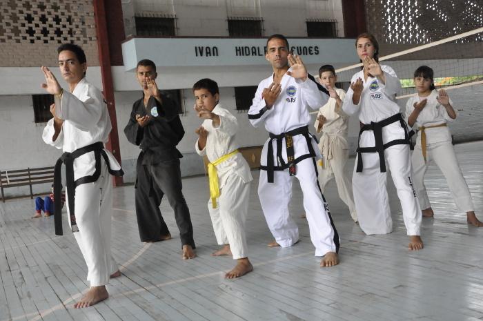 artes marciales2 web