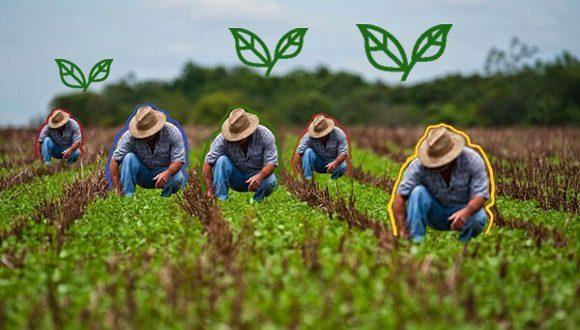 cuba agricultura 580x330 580x3301