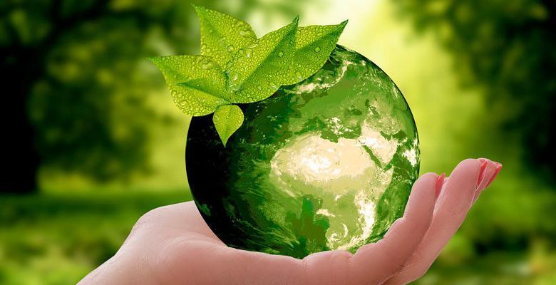 dia mundial del medio ambiente 823x400