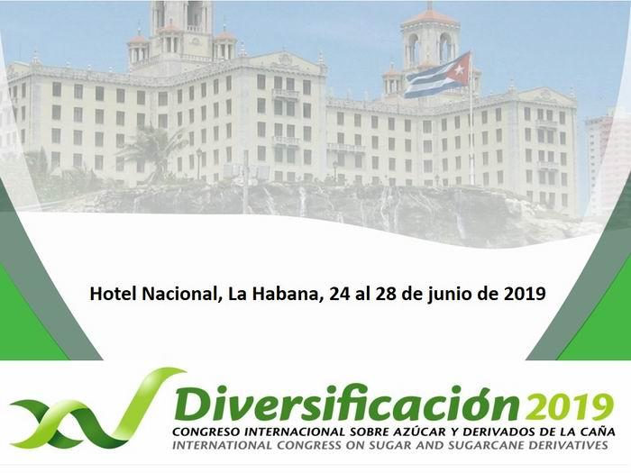 diversificacion 2019