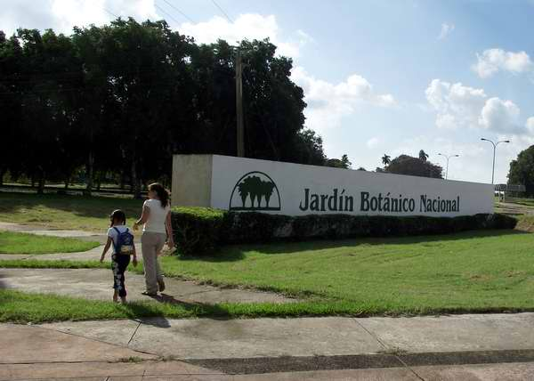 jardin botanico nacional cuba1