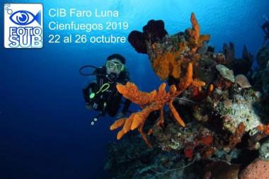 Comienza hoy Fotosub 2019 en Cienfuegos