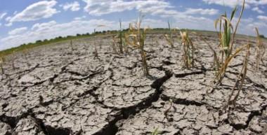 Combatir la Desertificación y la Sequía