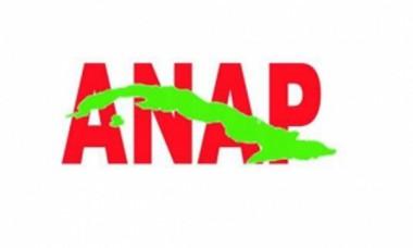 Logotipo de la ANAP