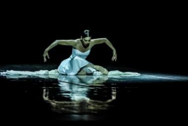 La primera bailarina VIengsay Valdés ofreció un homenaje a Alicia Alonso en la gala de clausura con la intepretación de Para Alicia, coreografía de Tania Vergara.