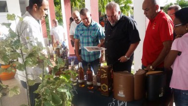 El ministro de Turismo, Manuel Marrero, constató las potencialidades de las industrias cubanas para insertarse en el mercado turístico.