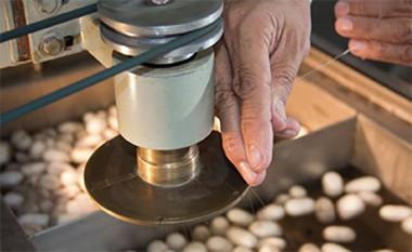 Producción de seda